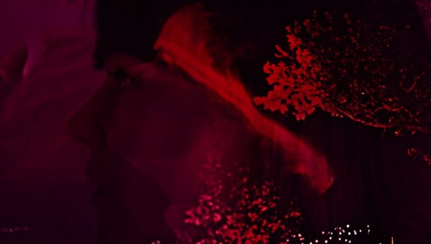 vlcsnap-2017-01-23-17h13m57s454